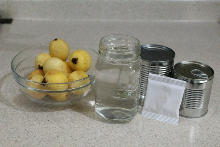gelatina de guayaba ingredientes